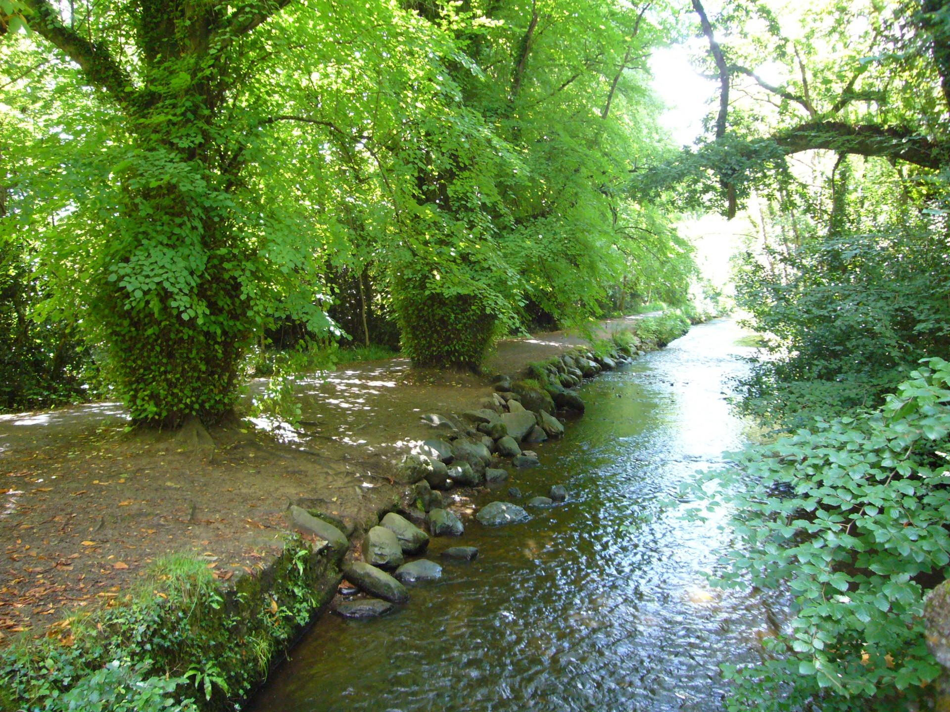 3.Parque Nacional de Killarney -Irlanda- 2012. Pablo Ortiz Soto