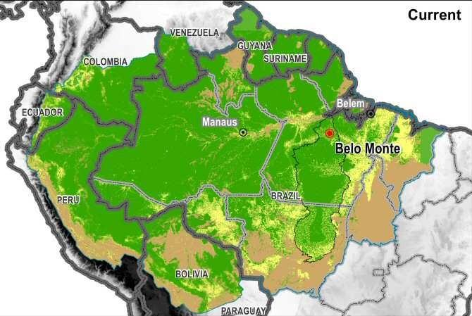 Amazonas ahora