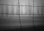 'La muerte es un maestro de Alemania' Una lectura de «Fuga de Muerte» de Paul Celan.